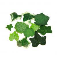 Набор листочков для скрапбукинга