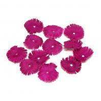 Темно-фиолетовые лепестки цветов