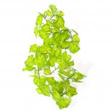Плющи искусственные с виноградными листьями