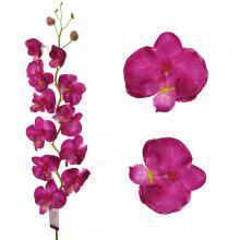 Орхидеи из латекса Голландия
