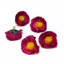 Головки маргариток маленькие фиолетовые