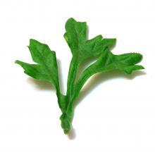 Листья искусственные зеленые
