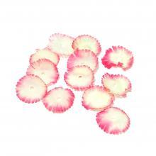 Лепестки цветов набор