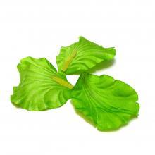 Лепестки зеленые набор