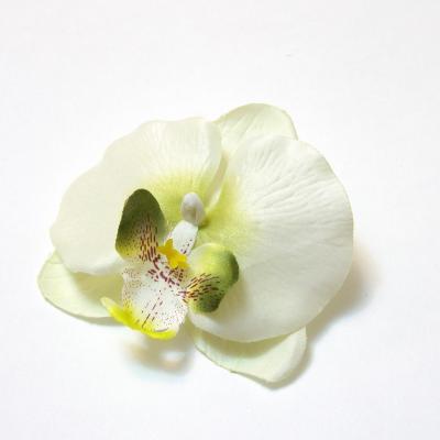 Головки белых цветов оптом