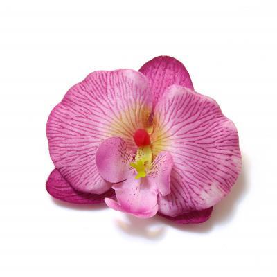 Цветы головки орхидей