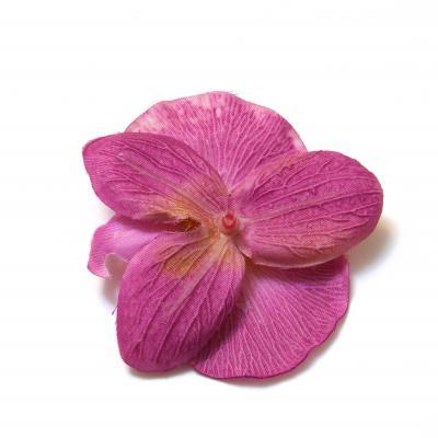 Обратная сторона головки фиолетовой орхидеи