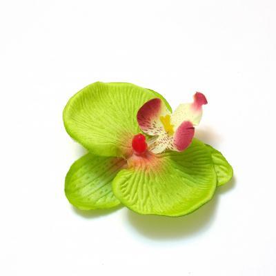 Головки орхидей небольших размеров