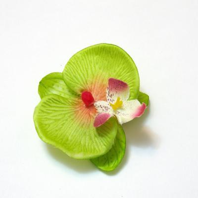 Зеленые головки цветов