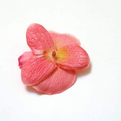 Головка розовой орхидеи с обратной стороны