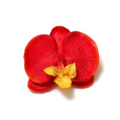 Головки орхидей искусственные