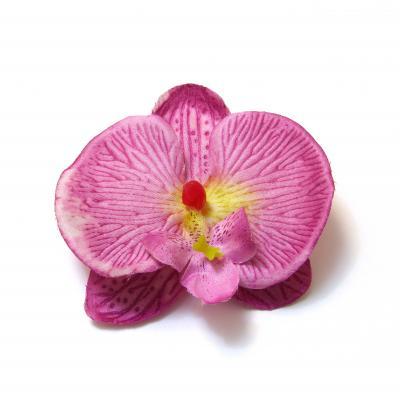 Что можно сделать с орхидеями
