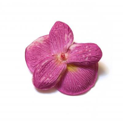 Обратная сторона головки орхидей