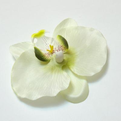 Недорого головки цветов орхидеи