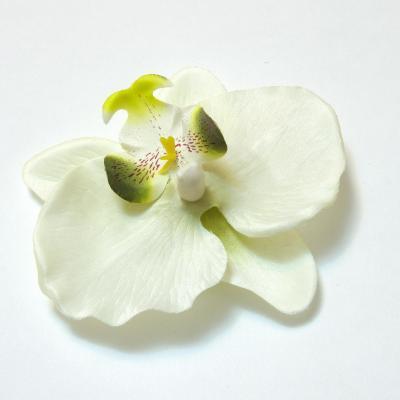 Орхидея головка для цветка