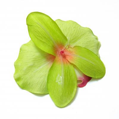Головка орхидеи обратная сторона