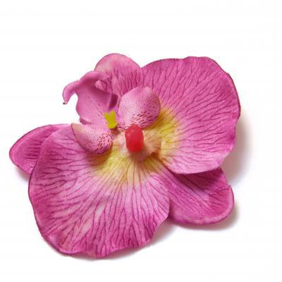 Орхидеи оптом