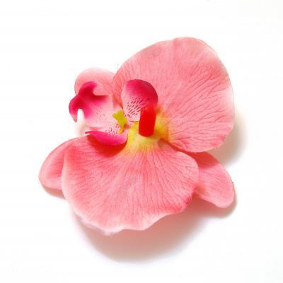 Орхидеи головки