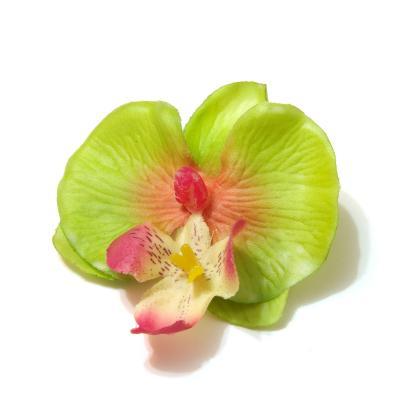Головки зеленых орхидей