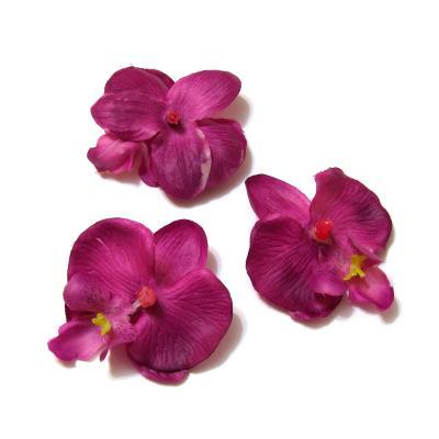 Фиолетовые головки орхидей