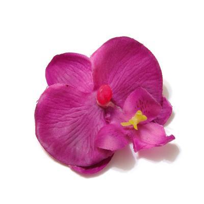 Головки цветов фиолетового цвета
