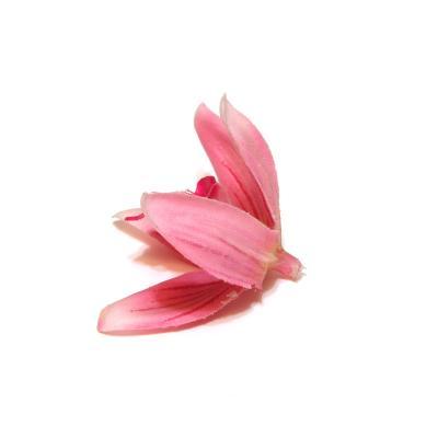 Головки орхидей распродажа