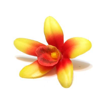 Орхидея оранжевая купить
