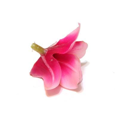 Обратная сторона головки орхидеи