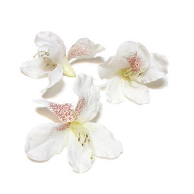 Шелковые головки цветов