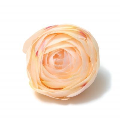 Камелия головки цветов