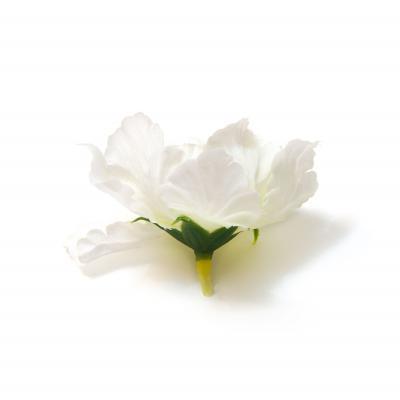 Головки цветов белого цвета