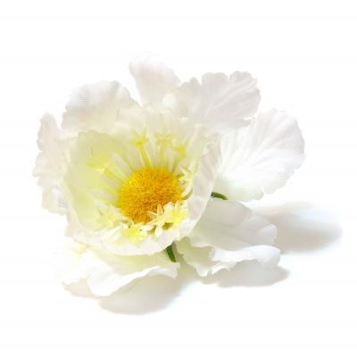 Головки цветов оптом