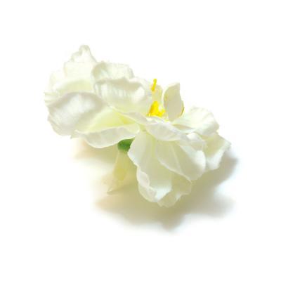 Белые головки яблоневого цвета