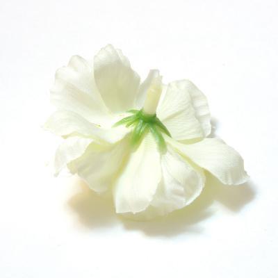 Обратная сторона цветка яблони