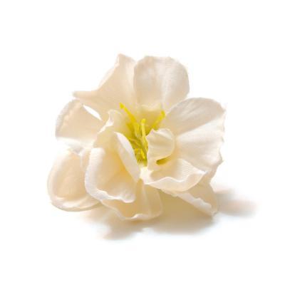 Головки цветов оптом маленькие