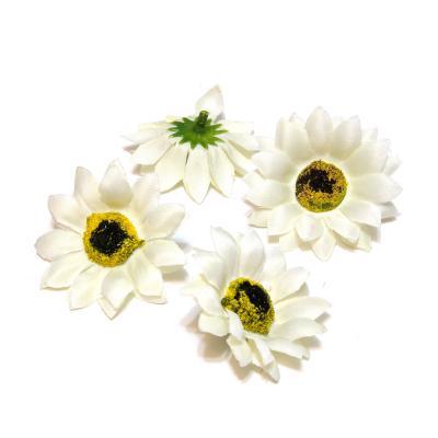 Белые головки цветов