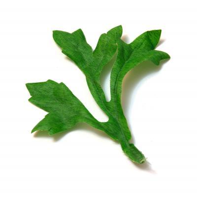 Листья искусственные тройные