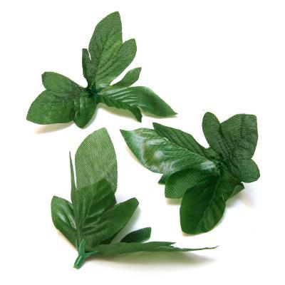 Листья для цветов темно-зеленые