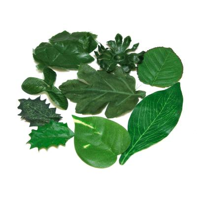 Набор листьев микс