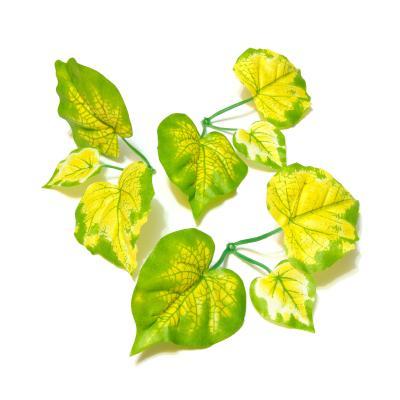 Виноградные листочки