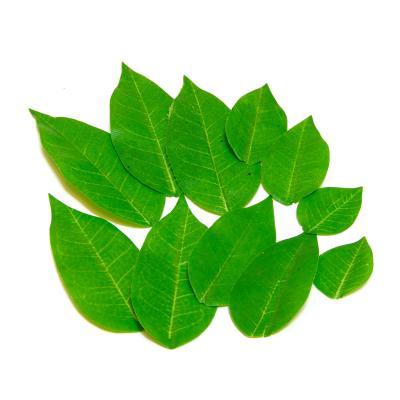 Лисья светло-зеленые для скрапа