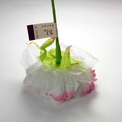 Головка цветка с обратной стороны