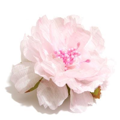 Розовый пион головка