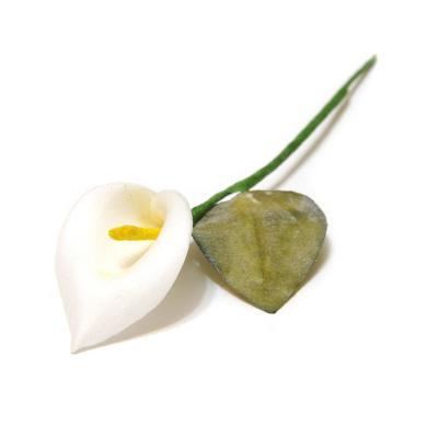 Кала белая миниатюрная