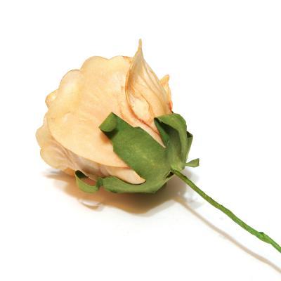 Роза с обратной стороны