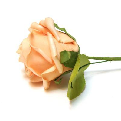 Нежные свадебные цветы