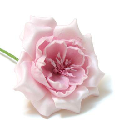 Головка розы пенка