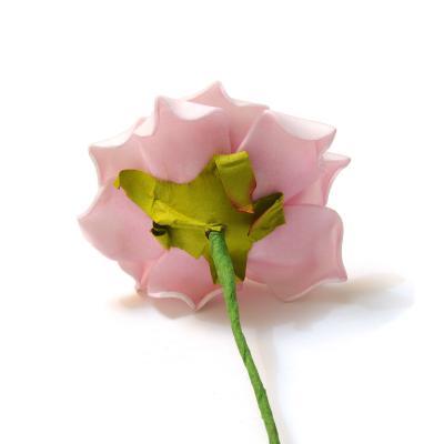 Обратная сторона головки розы