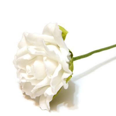Красивые цветы из латекса