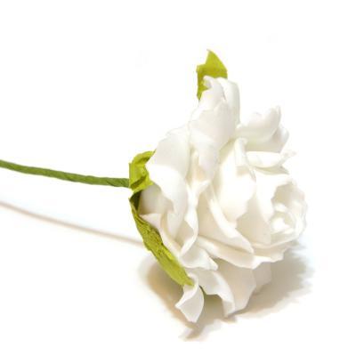 Розы белые латекс